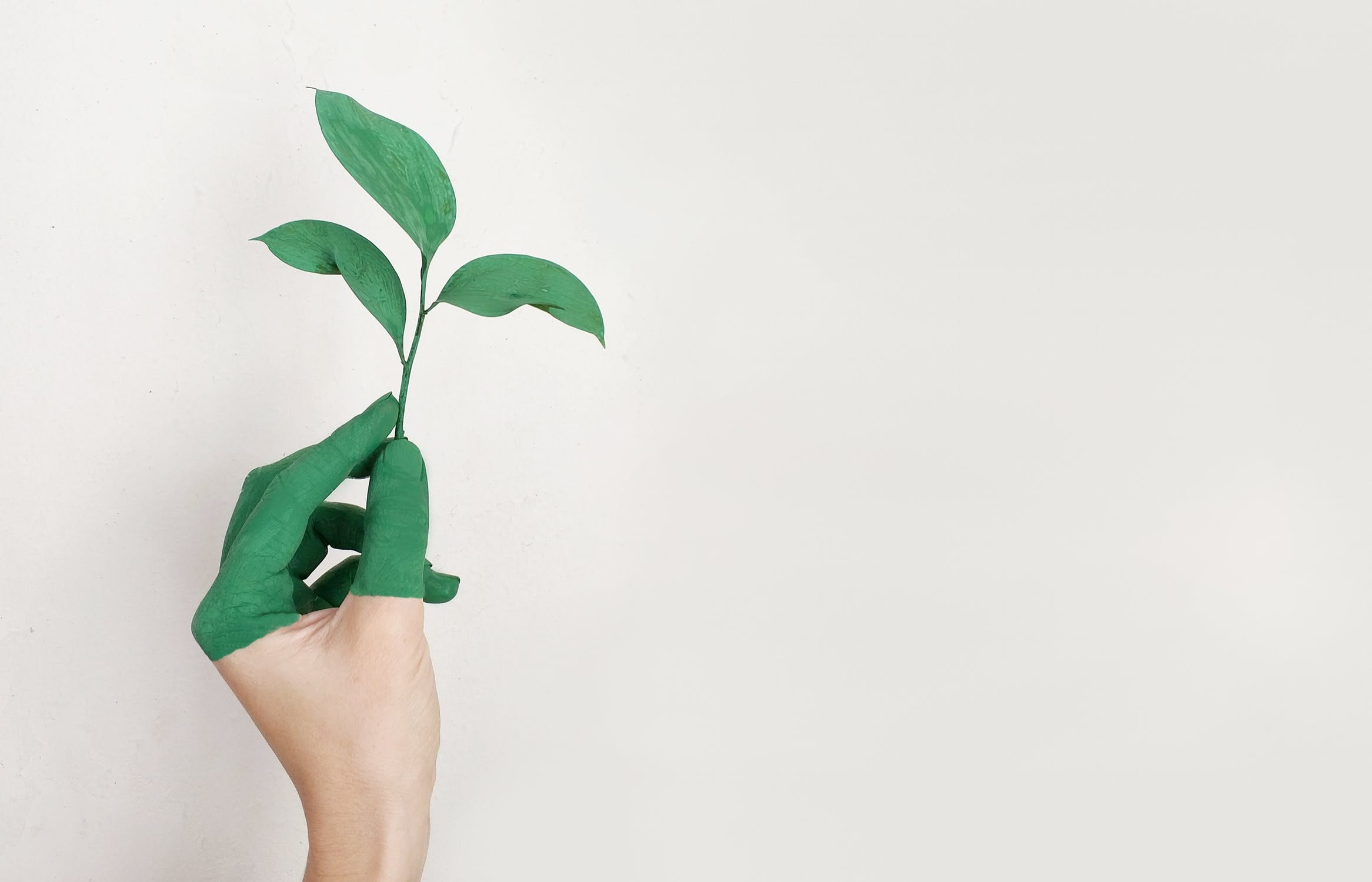 Going Green Just Got Simpler with These Ten Easy Ways