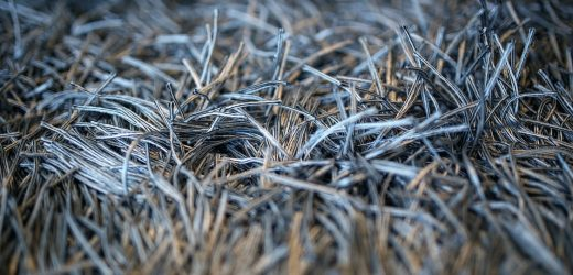 Health Benefits of Keeping Your Carpets and Rugs Clean All the Time – An Overview